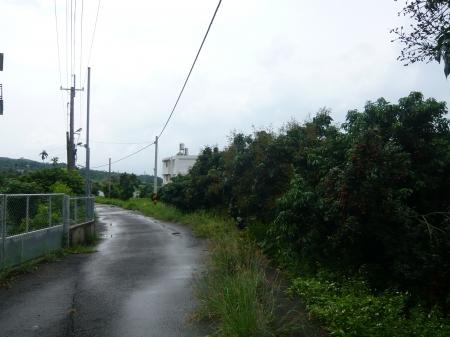 ★玉山不動產-南投吉利路小農地248坪