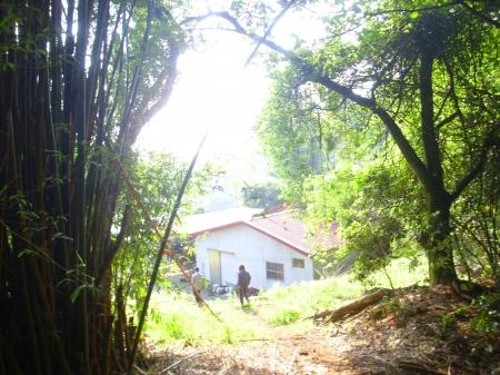 林子二期建地